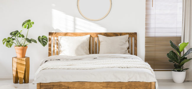 Sun shining on a white wall with a round mirror in a minimalist bedroom interior with natural, wooden furniture and beautiful green plants (Sun shining on a white wall with a round mirror in a minimalist bedroom interior with natural, wooden furniture